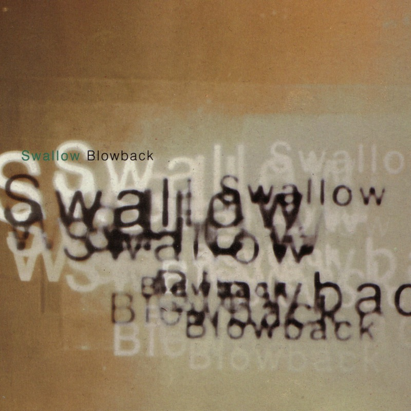 Swallow Blowback
