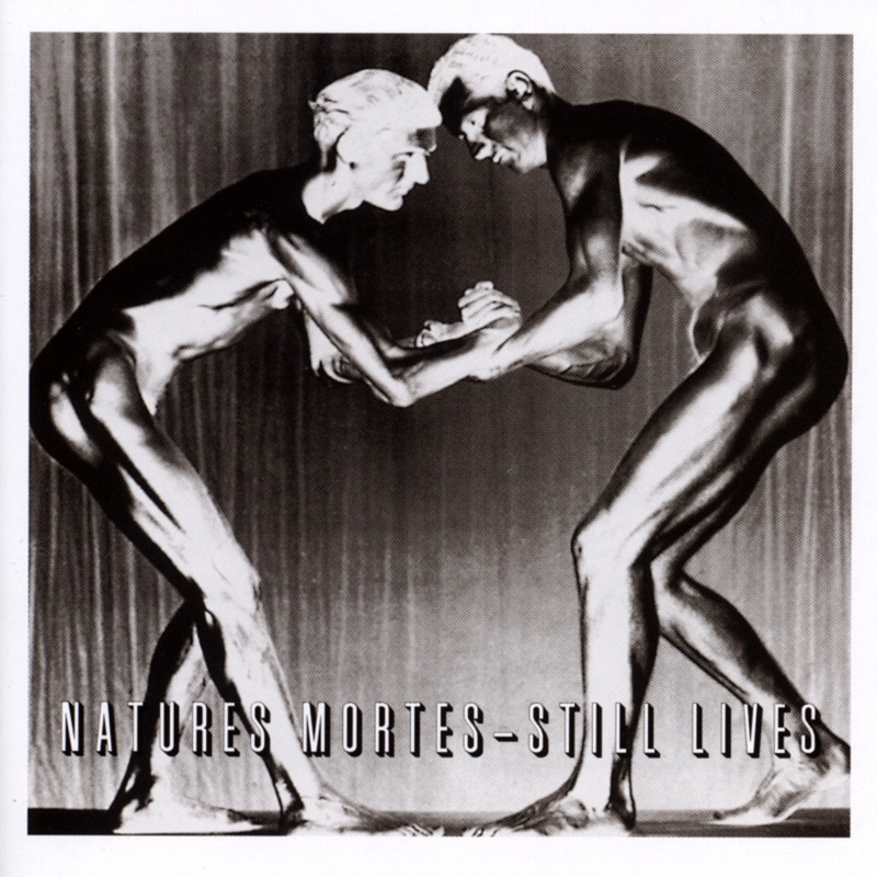 Bauhaus Natures Mortes - Still Lives